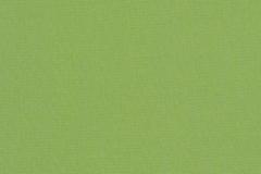 Canvas-Ginkgo